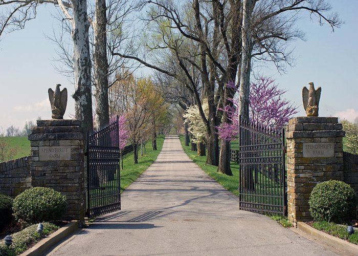Spenthrift Farm Greeting Card featuring the photograph Spendthrift Farm Entrance by Roger Potts