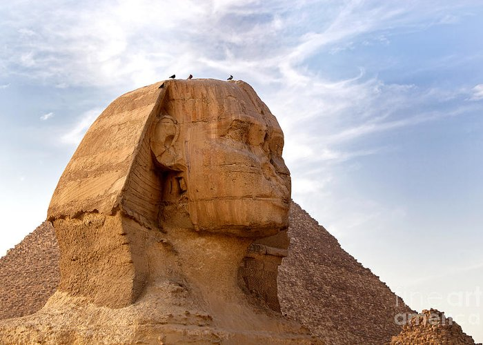 Africa Greeting Card featuring the photograph Sphinx Egypt by Jane Rix