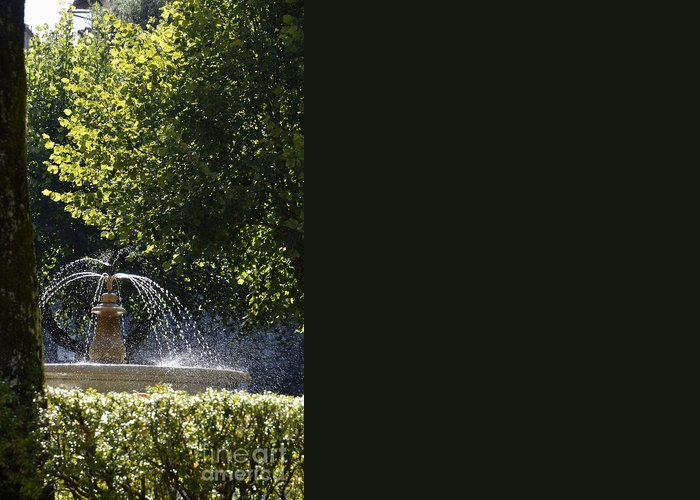 Color Greeting Card featuring the photograph Splashing Water From Fountain by Sami Sarkis