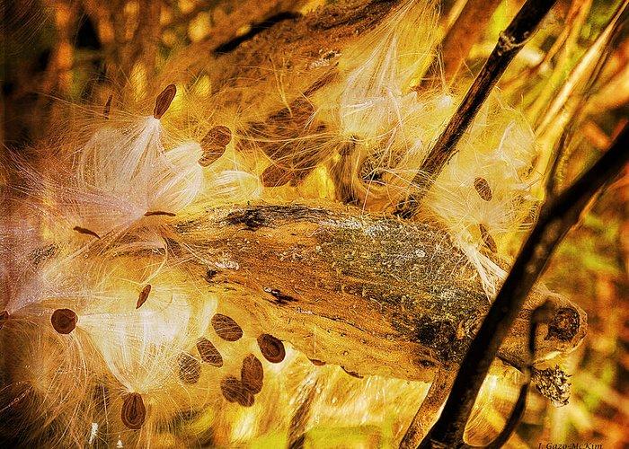Milkweed Greeting Card featuring the digital art Spray Of Sienna by Jo-Anne Gazo-McKim