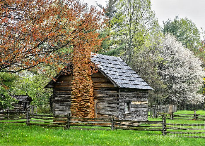 North Carolina Greeting Card featuring the photograph Spring Cabin I - Blue Ridge Parkway by Dan Carmichael