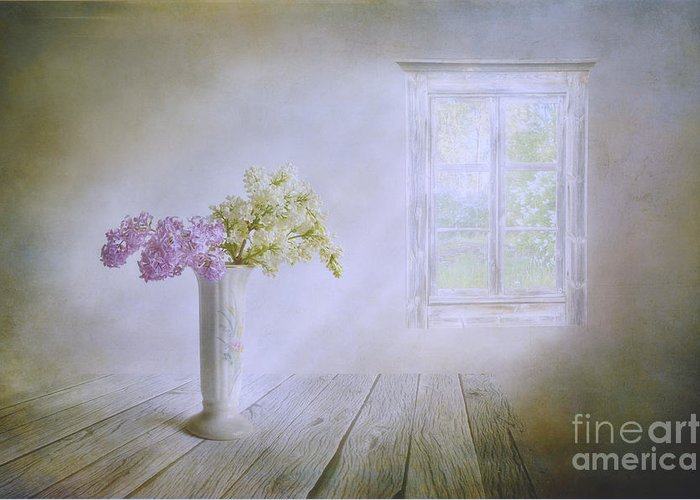 Art Greeting Card featuring the photograph Spring Dream by Veikko Suikkanen