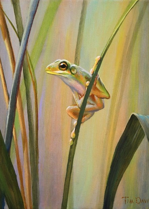 Spring Peepers Greeting Cards