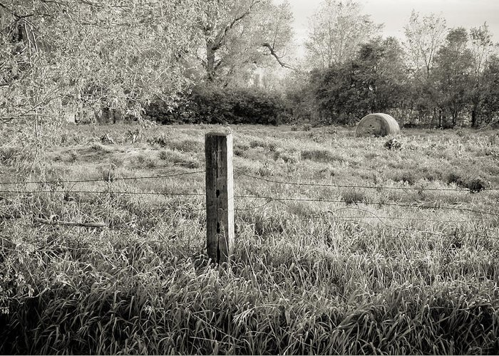 Spring Greeting Card featuring the photograph Spring Post And Bale In Black N White by Tracy Salava