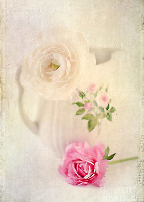 Aged Greeting Card featuring the photograph Spring Romance by Darren Fisher