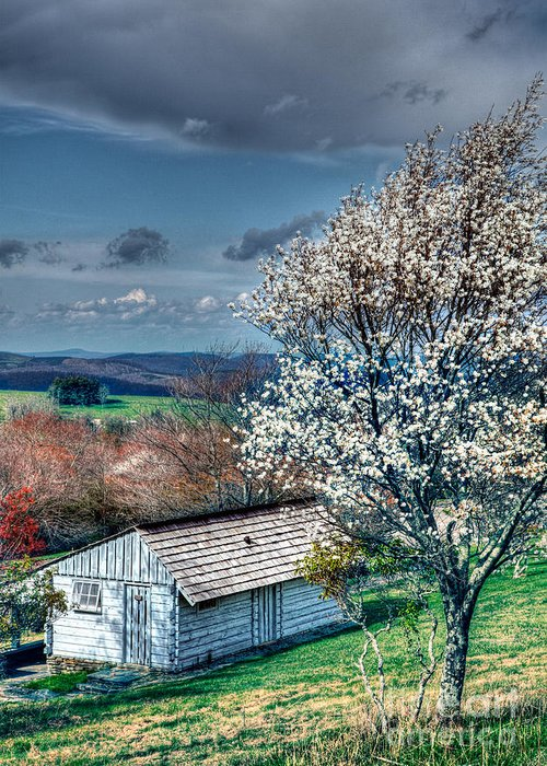 North Carolina Greeting Card featuring the photograph Springtime In The Blue Ridge Mountains I by Dan Carmichael
