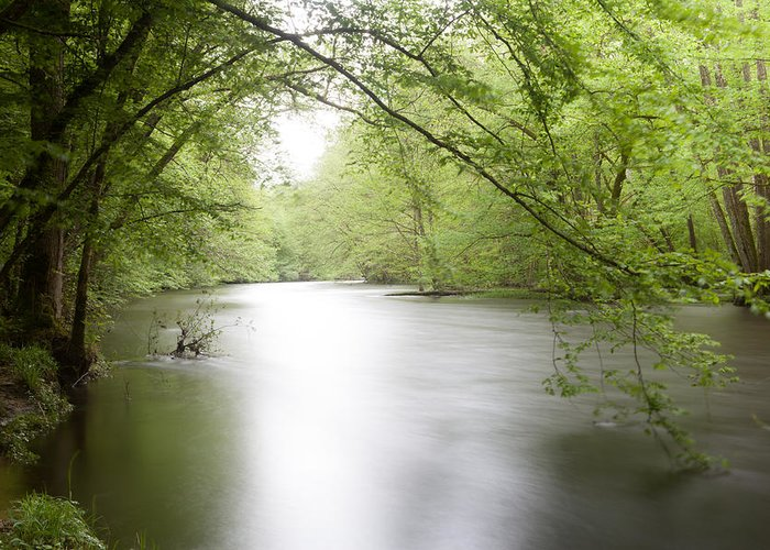 Morvan Greeting Card featuring the photograph Springtime River by Dirk Ercken
