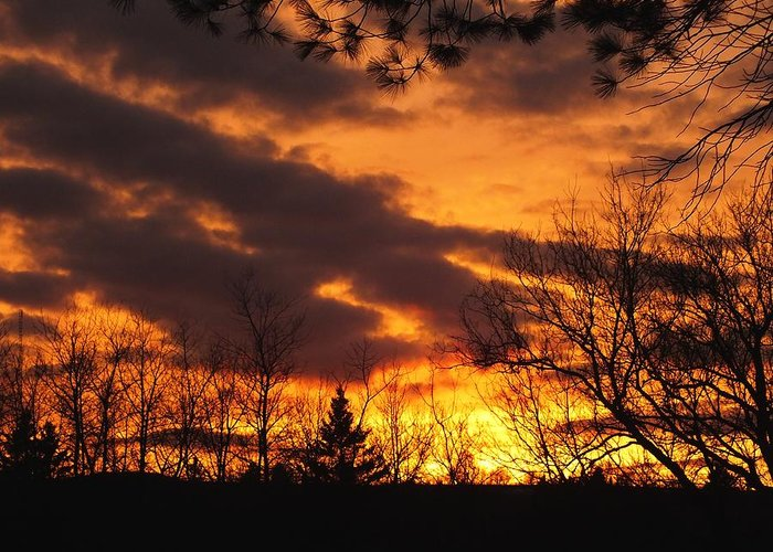 New England Greeting Card featuring the photograph Springtime Sunset by Gene Cyr
