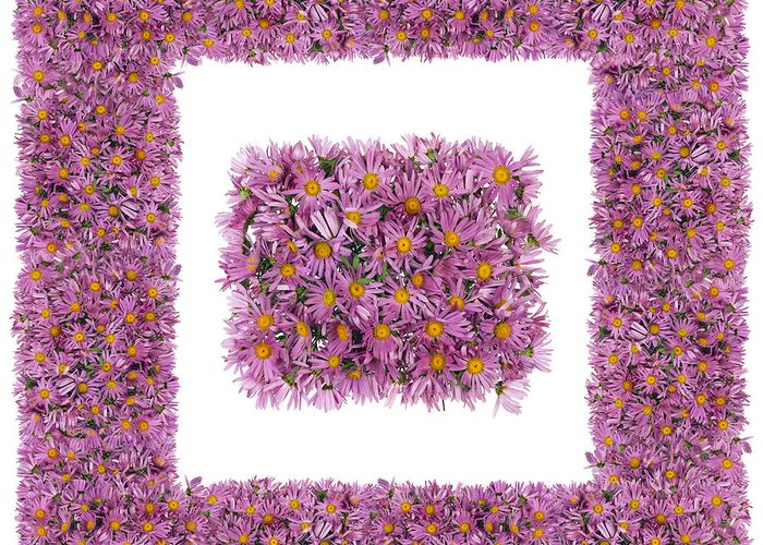 Square Greeting Card featuring the photograph Square Pink Floral Frame  by Aleksandr Volkov