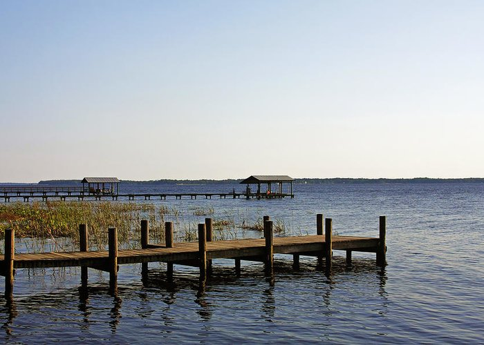 St Greeting Card featuring the photograph St Johns River Florida - Walk This Way by Christine Till