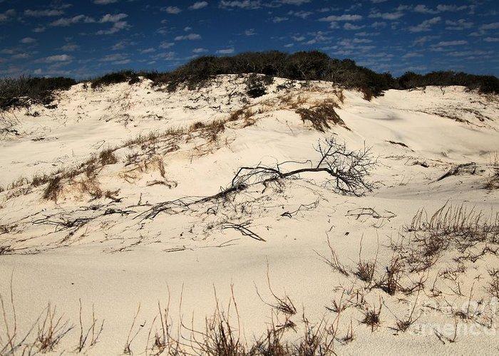 St Joseph Peninsula State Park Greeting Card featuring the photograph St. Joseph Sand Dunes by Adam Jewell