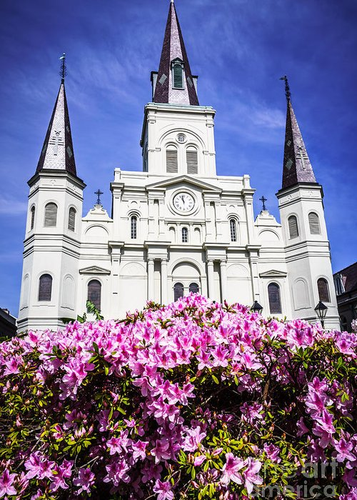 America Greeting Card featuring the photograph St. Louis Cathedral And Flowers In New Orleans by Paul Velgos