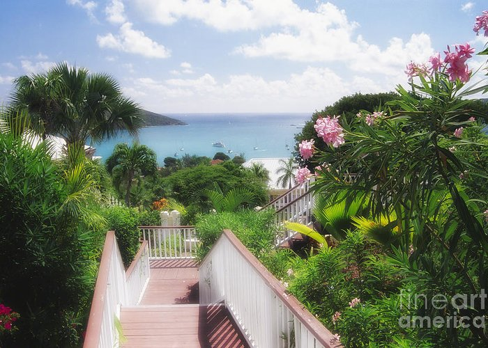 Vista Greeting Card featuring the photograph Stairs To Paradise by George Oze