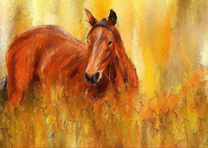 Bay Thoroughbred Horse Greeting Cards