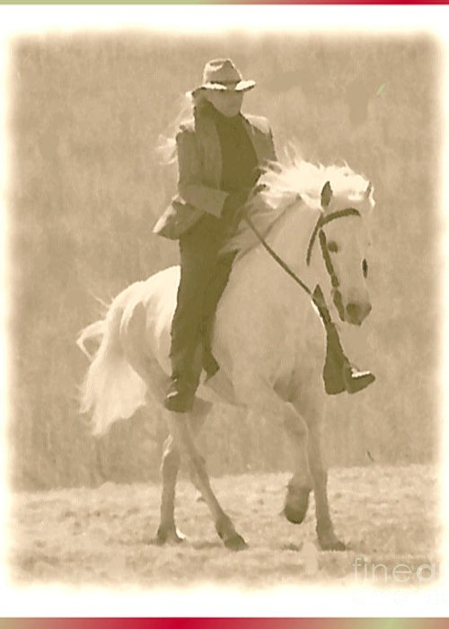 Horse Greeting Card featuring the photograph Stallion Strides by Patricia Keller