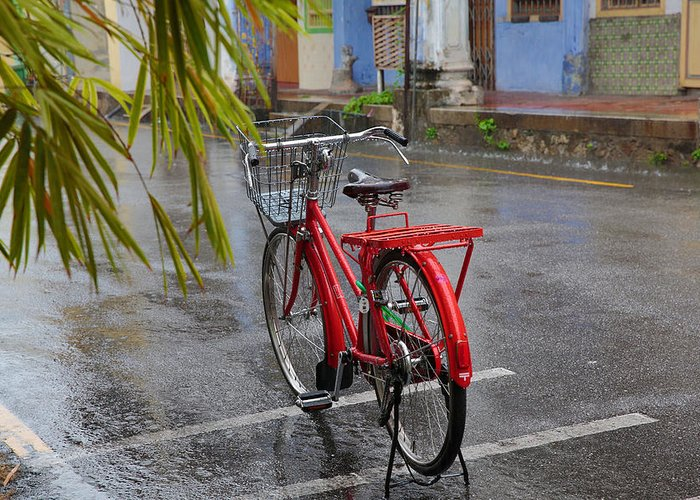 Penang Greeting Card featuring the photograph Standing In The Rain Penang by Tony Brown