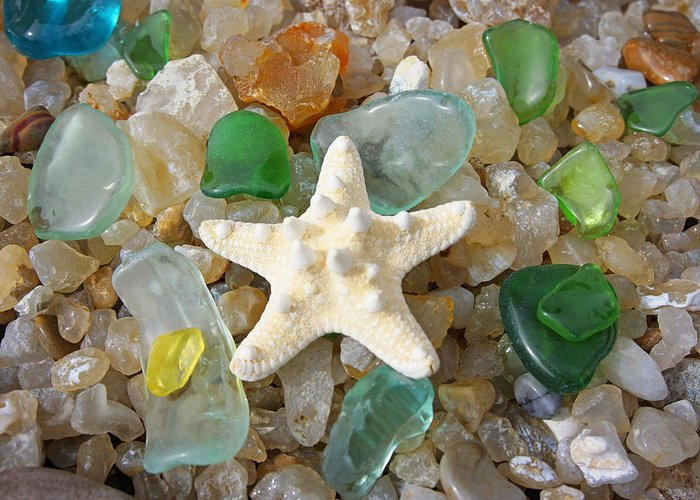 Decorative Greeting Card featuring the photograph Starfish Fine Art Photography Seaglass Coastal Beach by Baslee Troutman
