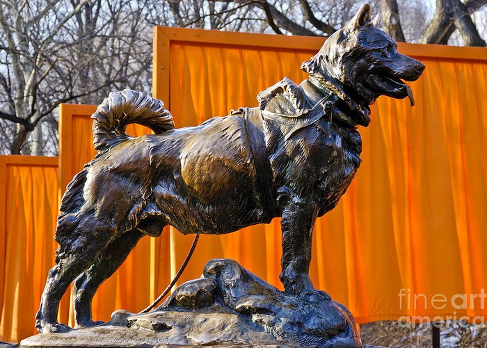 Ew York City Greeting Card featuring the photograph Statue Of Balto In Nyc Central Park by Anthony Sacco