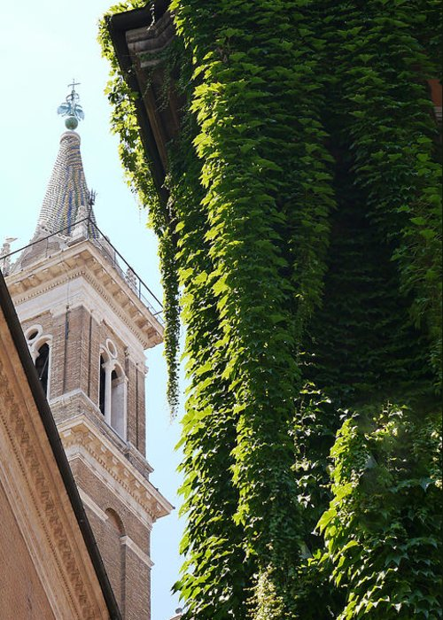 Greeting Card featuring the photograph Steeple And Ivy by Herb Paynter