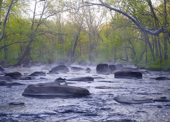 Stepping Greeting Card featuring the photograph Stepping Stones by Bill Cannon
