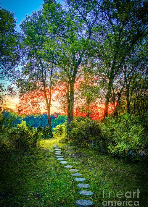 Stepping Stones Greeting Card featuring the photograph Stepping Stones To The Light by Marvin Spates