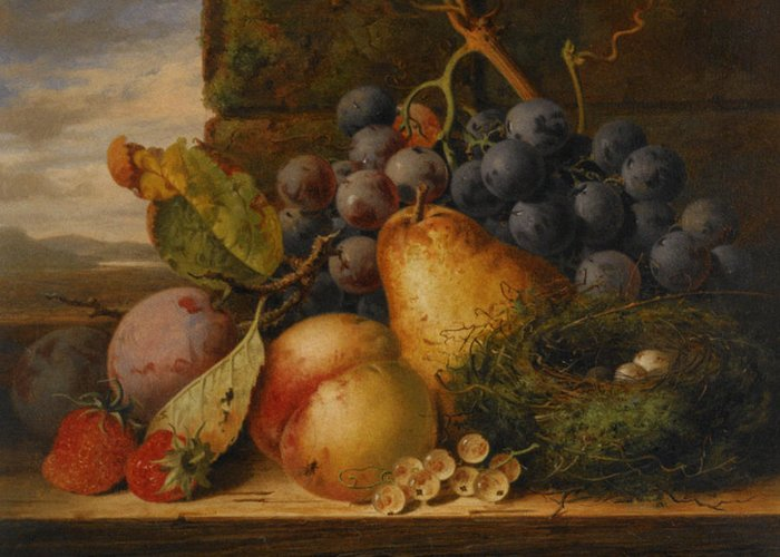 Birds Nest Butterfly And Fruit Greeting Card featuring the digital art Still Life Grapes Pares Birds Nest by Edward Ladell