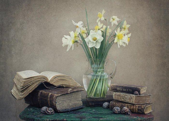 Daffodil Greeting Cards