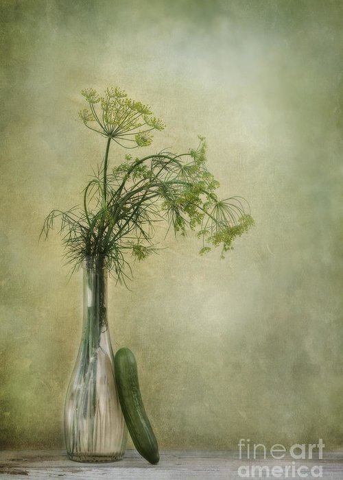 Dill Greeting Card featuring the photograph Still Life With Dill And A Cucumber by Priska Wettstein
