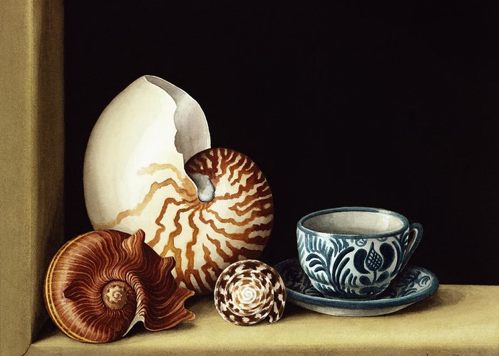 Shell; Sea Shells; Teacup; Cup; Saucer; Nautile; Frame Greeting Card featuring the painting Still Life With Nautilus by Jenny Barron