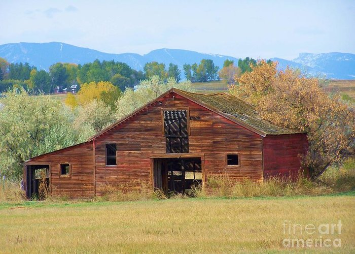 Barn Wood Landscape Trees  Greeting Card featuring the mixed media Still Standing by Tammy McDougall