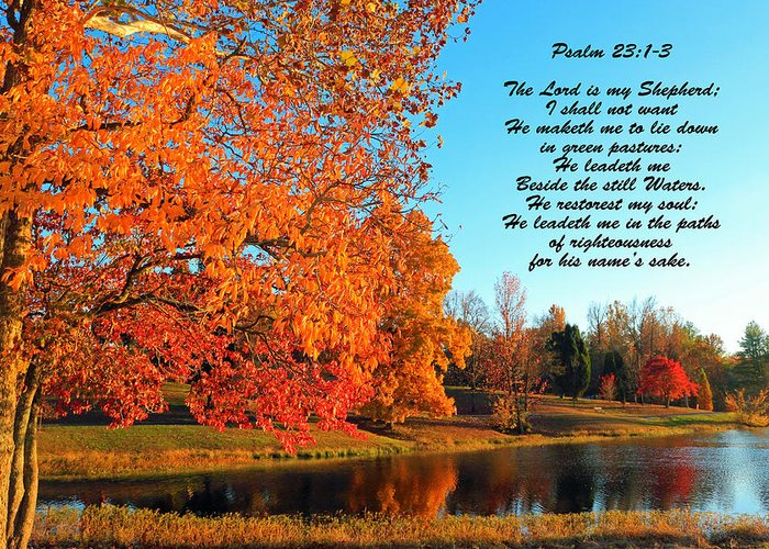 Autumn Greeting Card featuring the photograph Still Waters by Lorna R Mills DBA Lorna Rogers Photography
