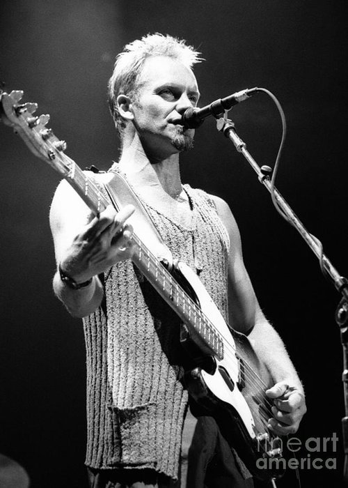 Sting Greeting Card featuring the photograph Sting-gp29 by Timothy Bischoff