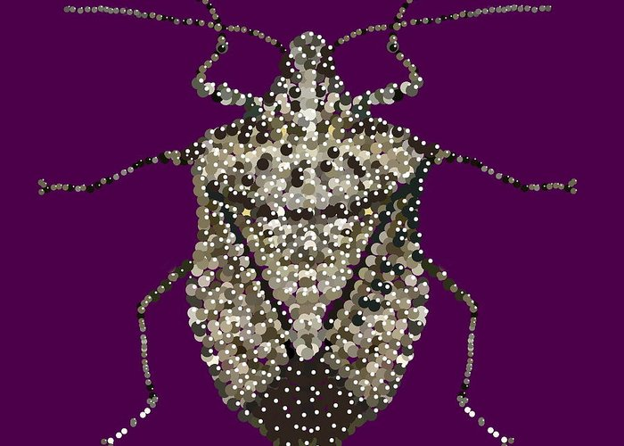 Stink Bug Greeting Card featuring the digital art Stink Bug Bedazzled by R Allen Swezey