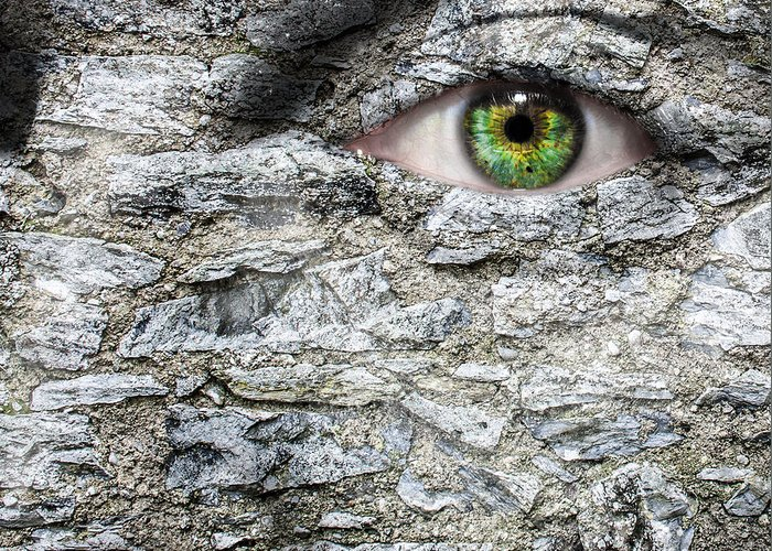 Eye Greeting Card featuring the photograph Stone Face by Semmick Photo