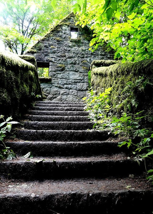 Stone House Greeting Card featuring the photograph Stone House Stairs by Lizbeth Bostrom