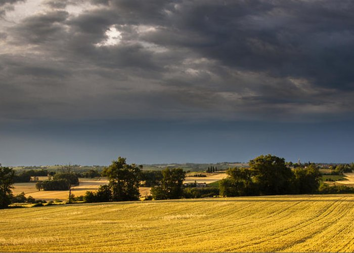 Matthew Greeting Card featuring the photograph Storm Brewing Over Corn by Matthew Bruce