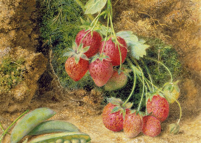 Moss Greeting Card featuring the painting Strawberries And Peas by John Sherrin
