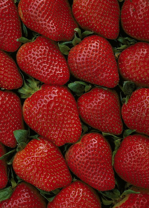 Strawberries Photographs Greeting Card featuring the photograph Strawberry Flats by David Marr