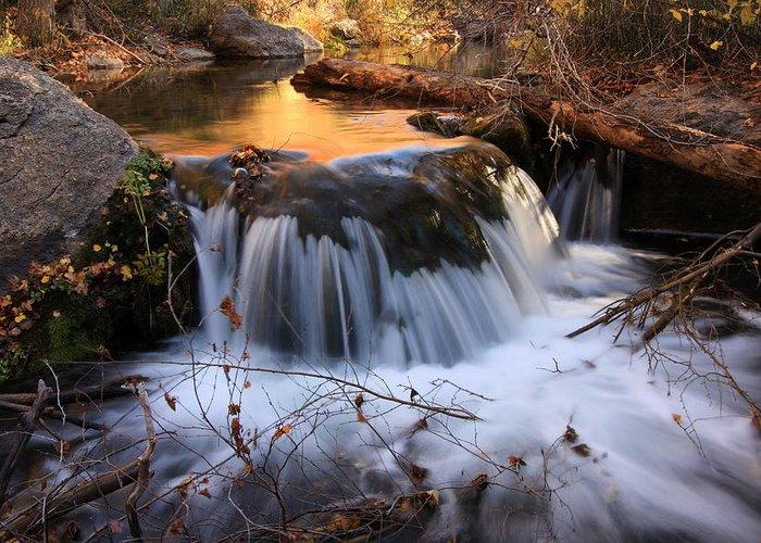 Autumn Greeting Card featuring the photograph Stream Cascade by David Kocherhans