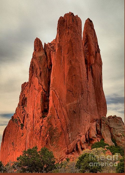Garden Of The Gods Greeting Card featuring the photograph Stretched Upward by Adam Jewell