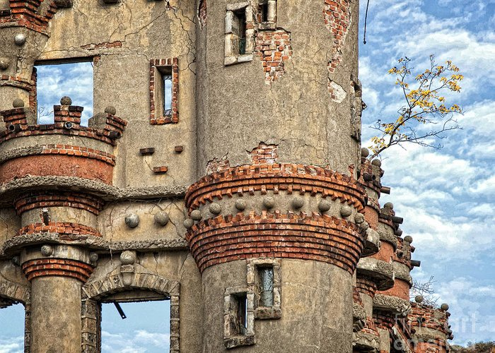 Bannermans Castle Greeting Card featuring the photograph Struggling To Survive by Claudia Kuhn