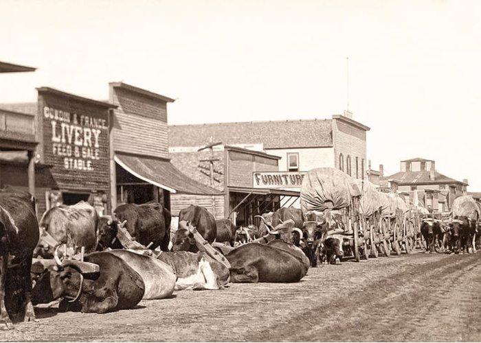 Sturgis Greeting Card featuring the photograph Sturgis South Dakota C. 1890 by Daniel Hagerman
