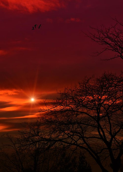 Sunset Greeting Card featuring the photograph Suburban Skies by Tom York Images