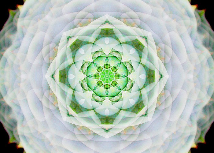 Rainbow Greeting Card featuring the photograph Succulent Mandala by Susan Bloom