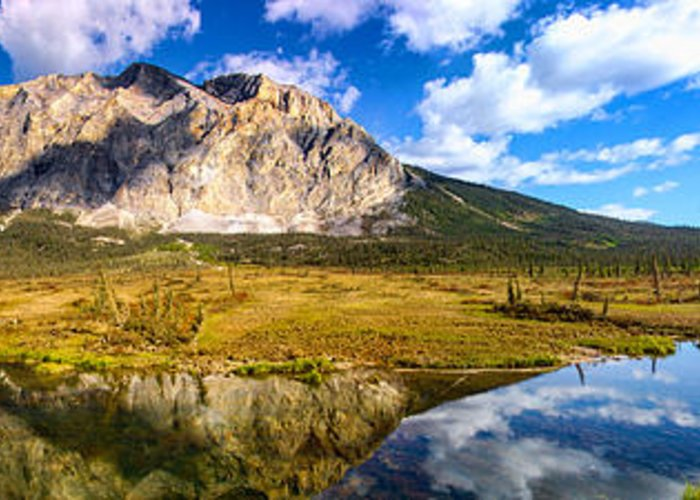 Landscape Greeting Card featuring the photograph Sukakpak Reflection by Chad Dutson