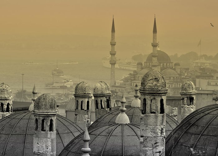 Istanbul Greeting Card featuring the photograph Suleymaniye Mosque And New Mosque In Istanbul by Ayhan Altun