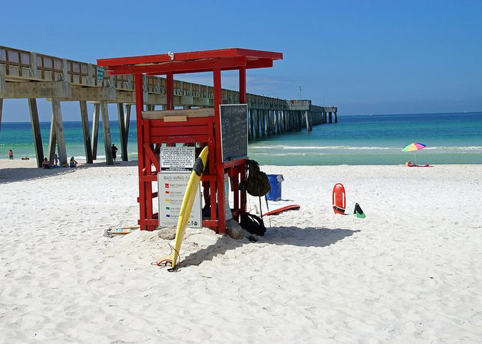 Florida Greeting Card featuring the photograph Summer Job by Thomas Fouch