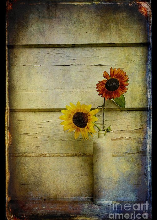Sunflowers Greeting Card featuring the photograph Summer Sunflowers by Sari Sauls