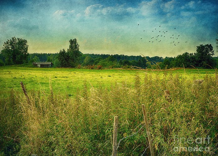 Photo Greeting Card featuring the photograph Summertime by Jutta Maria Pusl