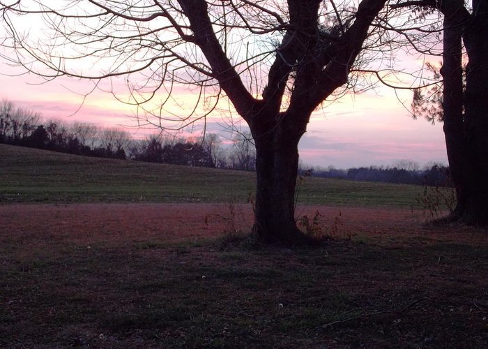 Greeting Card featuring the photograph Sun Set In Dec 2013 by Regina McLeroy